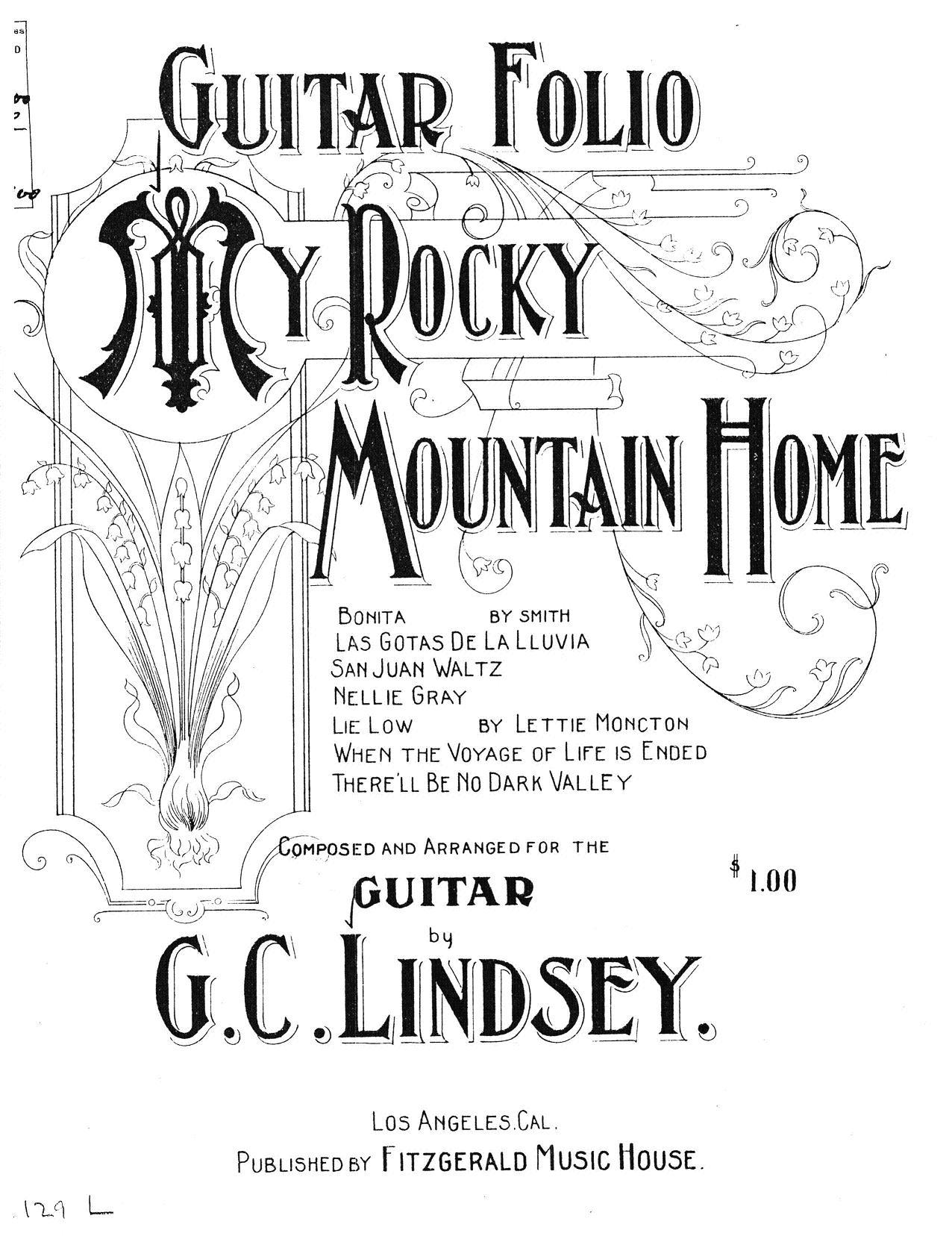 19th C American Guitar In Alternate Tunings
